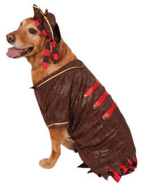 Big Dog Pirate Costume
