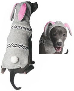 Bunny Dog Sweater Costume